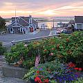 Chatham Fish Pier Summer Flowers Cape Cod Print by John Burk