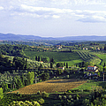 Chianti Region in Italy Print by Gregory Ochocki and Photo Researchers