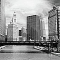 Chicago River Buildings Skyline Poster by Paul Velgos