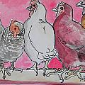 chickens by Jenn Cunningham
