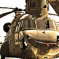 Chinook Poster by Mitch Cat