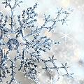 Closeup of snowflake Print by Sandra Cunningham