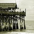 Cocoa Beach FL II by Susanne Van Hulst