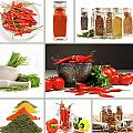 Collage of different colorful spices for seasoning Print by Sandra Cunningham