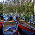 Colorful Canoes Print by Sharon Kalniz