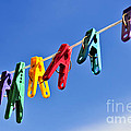 Colorful clothes pins Poster by Elena Elisseeva