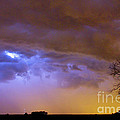 Colorful Cloud to Cloud Lightning Stormy Sky Print by James BO  Insogna