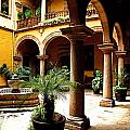 Columns and Courtyard Poster by Olden Mexico