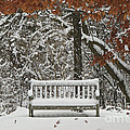 Come Sit Awhile Poster by Inspired Nature Photography By Shelley Myke