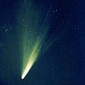 Comet West, 1976 Poster by Science Source