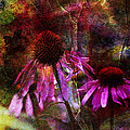 Cone Flower Beauties Print by J Larry Walker