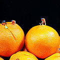 Construction on oranges Print by Paul Ge