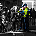 Coppers Print by Paul Howarth