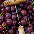 Corkscrew and wine cork on red grapes Print by Garry Gay