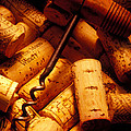 Corkscrew and wine corks Poster by Garry Gay