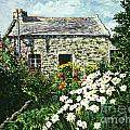 Cottage of Stone Poster by David Lloyd Glover