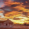 Country House Sunset Longmont Colorado Boulder County Poster by James Bo Insogna