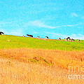 Cows On A Hill . 40D3430 . Painterly Poster by Wingsdomain Art and Photography
