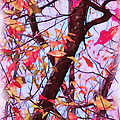 Crisp Autumn Day Print by Judi Bagwell