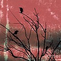 Crows The Watcher Print by Sacred  Muse