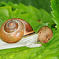Cute baby boy with a snail shell Print by Jaroslaw Grudzinski