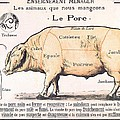 Cuts of Pork Print by French School
