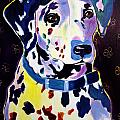 Dalmatian - Dottie Poster by Alicia VanNoy Call