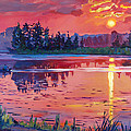 Daybreak Reflection Poster by David Lloyd Glover