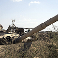 Destroyed Iraqi Tanks Near Camp Slayer Print by Terry Moore