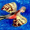 Detail of Bird People Flying Chaffinch  Poster by Sushila Burgess