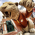Detroit Tigers Tiger statue outside of Comerica Park Detroit Michigan Poster by Gordon Dean II