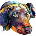 Doberman Watercolor Poster by Christy  Freeman