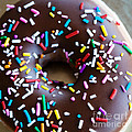 Donut with Sprinkles Print by Kim Fearheiley