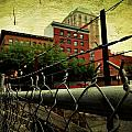 Down the fence Print by Cathie Tyler