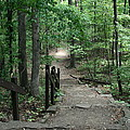 Down The Trail Print by CGHepburn Scenic Photos