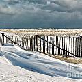 Drifting snow along the beach fences at Nauset Beach in Orleans  Print by Matt Suess