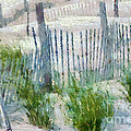 Dune Fences at Cape Hatteras National Seashore Print by Anne Kitzman