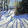 Early snow Darley Park Print by Andrew Macara