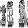 EGYPT: ROYAL MUMMIES, 1882 Print by Granger