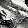 Empty Park Bench On Edge Poster by (c) Conrado Tramontini
