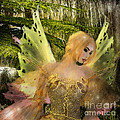 Enchanted Forest - Fae of the Forest Waters Print by Rosy Hall