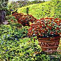 English Flower Pots Poster by David Lloyd Glover