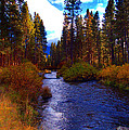 Evening Hatch on the Metolius River Photograph Print by Diane E Berry