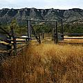 Ewing-Snell Ranch 1 by Larry Ricker