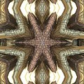 Fabric Grille Print by Ron Bissett
