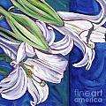 Faith Lily Two Print by Dawn Thrasher