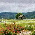 Farm - Barn - Out in the country  Print by Mike Savad