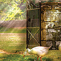 Farm - Geese -  Birds of a Feather Poster by Mike Savad