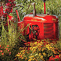Farm - Tractor - A pony grazing Print by Mike Savad
