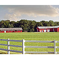 Farm Pasture Print by Brian Wallace